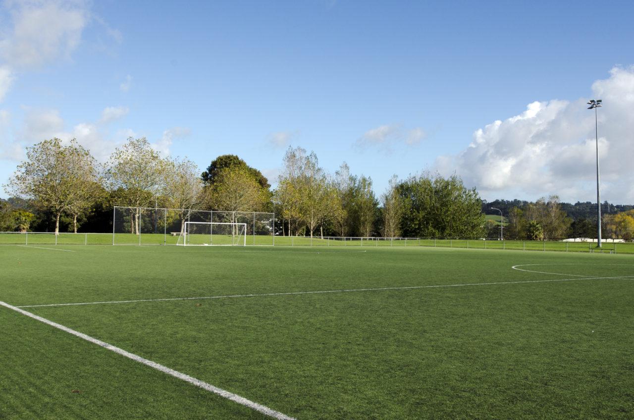 Goal Power Coaching - Training pitch